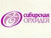 СИБИРСКАЯ ОРХИДЕЯ, сеть цветочных салонов Новосибирск
