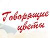 ГОВОРЯЩИЕ ЦВЕТЫ, цветочный салон Новосибирск