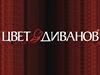 ЦВЕТ ДИВАНОВ сеть салонов Новосибирск