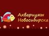 АКВАРИУМЫ НОВОСИБИРСКА, торгово-сервисная компания Новосибирск