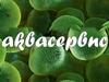 АКВАСЕРВИС, аквариумный салон Новосибирск