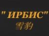 ИРБИС, спортклуб Новосибирск