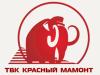 КРАСНЫЙ МАМОНТ ТВК Новосибирск
